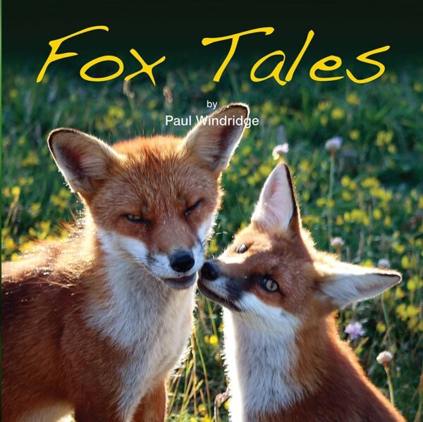 Fox Tales cover